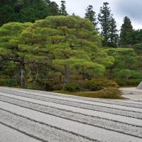 Zen-Garten am Ginkaku-ji