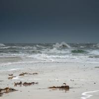Grenen, wo sich Nord- und Ostsee treffen