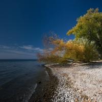 Herbst am Überlinger See