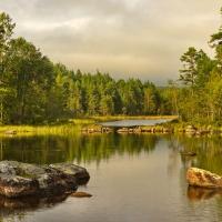 Glaskogen Naturreservat